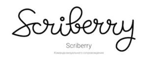 Scriberry – команда визуального сопровождения