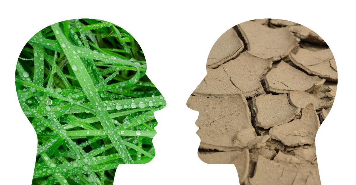Первые шаги к изменению управленческой культуры