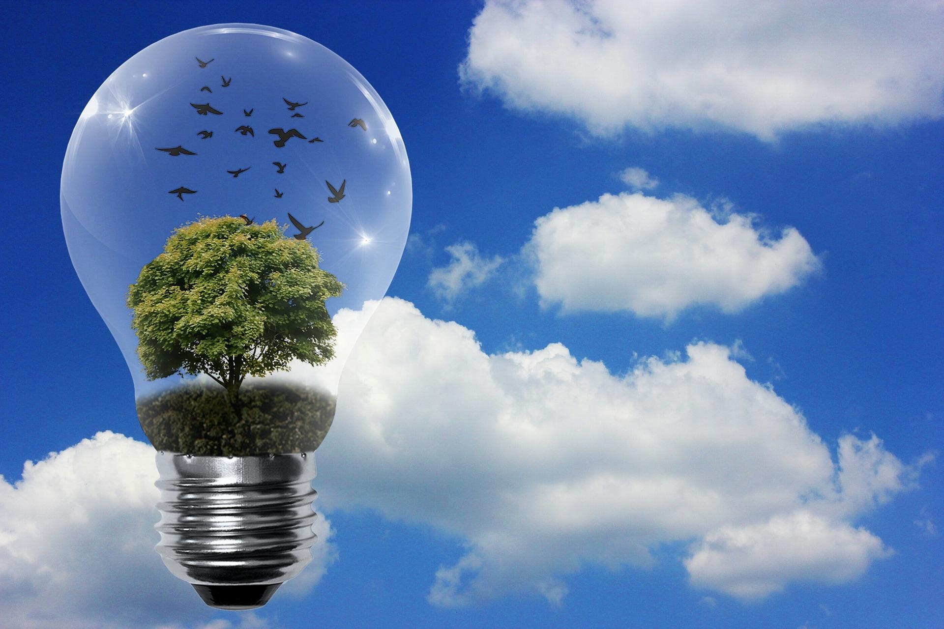 Энергия внутри и вокруг нас